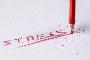 Les plantes anti-stress