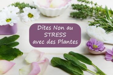 STRESS & Naturopathie